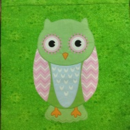 Elaine's excellent owl cushion